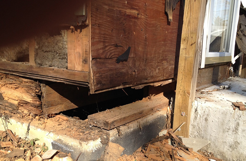 termite damage structure damage mercer county nj