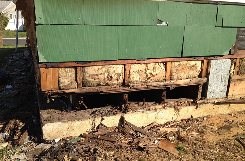 termite structural damage mercer county nj